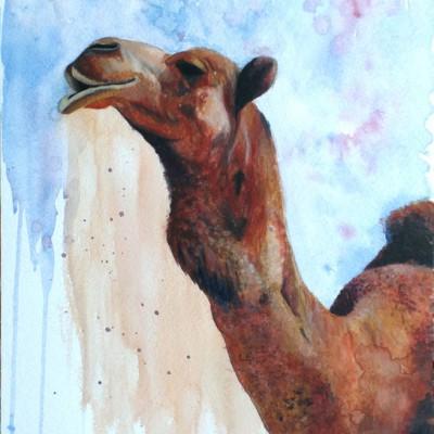 El Camello Viajero
