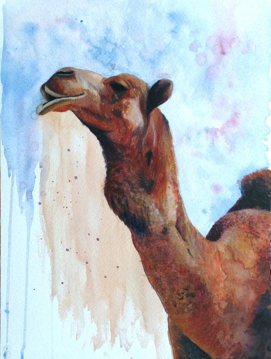 "NEW! ""El Camello Viajero"" / ""The traveler Camel"""