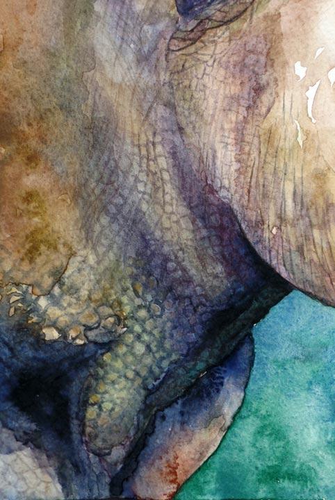 Rinoceronte, criatura fantástica. Detalle / Rhino, fantastic creature. Detail