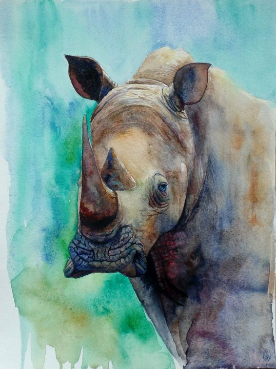 Rinoceronte, criatura fantástica II / Rhino, fantastic creature II 30x40cm