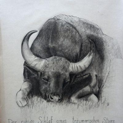 Der ruhige Schlaf eines träumerischen Stiers / The quiet Sleep of a dreamy Bull 48x56cm