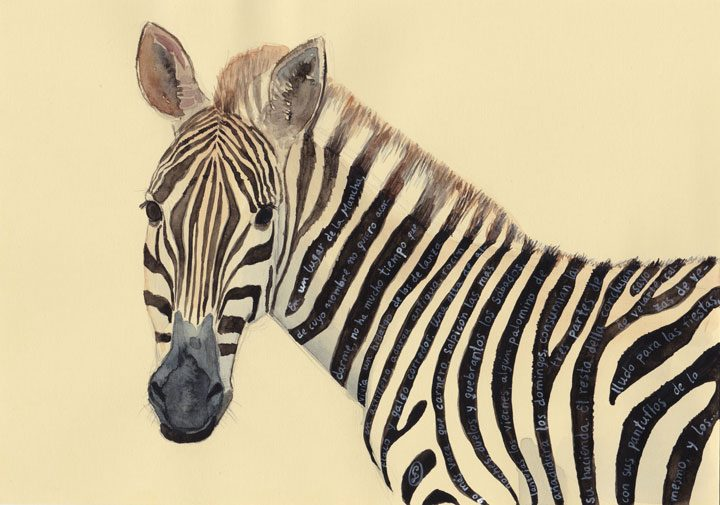The zebra who could read between the lines - Don Quijote. 2018