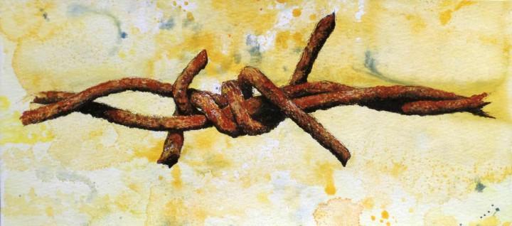 Alambre de espinos oxidados 2 / Rusty wire thorns 2 30x13cm