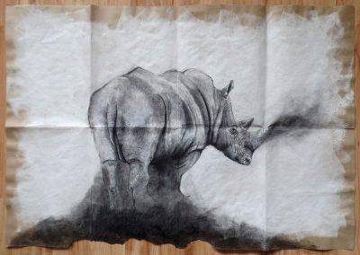 Polvo de Rinoceronte / Rhinoceros Powder 100x70cm