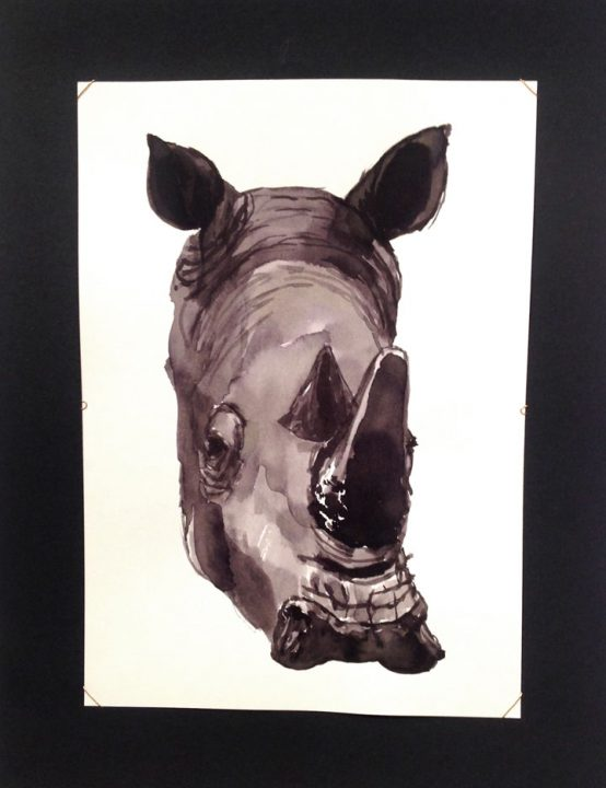 Retrato rinoceronte / Portrait rhino 15x21 cm