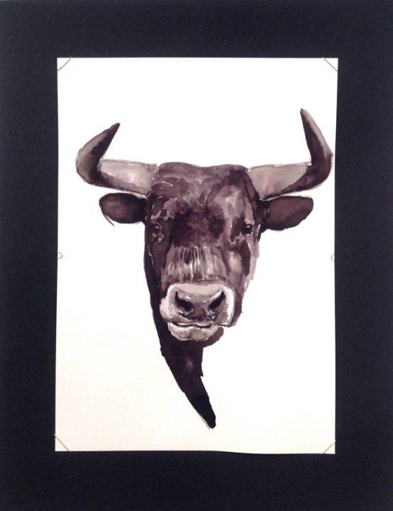 Retrato toro / Portrait bull 15x21 cm
