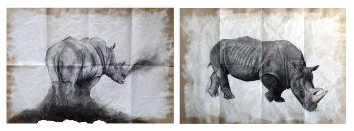 Polvo de Rinoceronte / El gran Rinoceronte