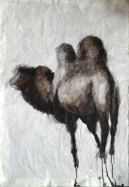 Camello mongol / Mongolian Camel 60x86cm