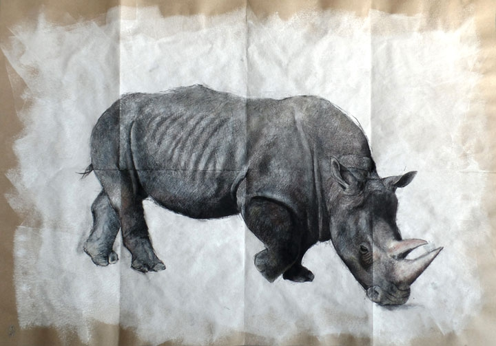 El gran Rinoceronte / The great Rhino 100x70cm
