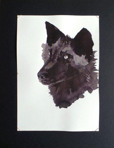Retrato lobo / Portrait wolf 15x21 cm